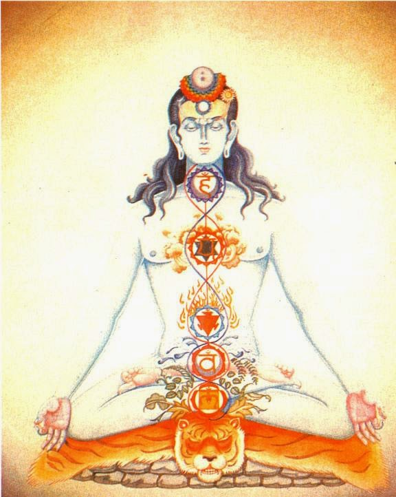 Shiva and Chakra